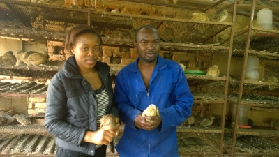 Maureen and Jackson Shabana hold quails in their bird house.