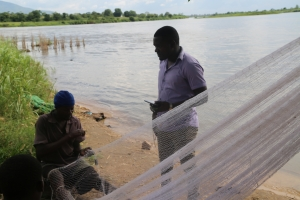 Malawi Fish Experts Call For More Investment and Farming To Boost Economic Gains